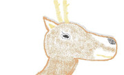 【無茶振りお題】 鹿 【イメージだけで描いてみた】