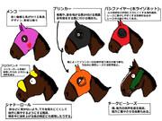 競馬の馬具(顔編)