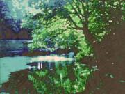 池と木と休憩所