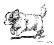 10分で描いた犬。模写です