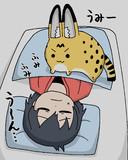 寝ているかばんちゃんをふみふみするサーバルちゃん