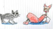 BNKRGと猫