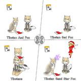 Tibetan Sad Fox