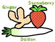 生姜、イチゴ、大根