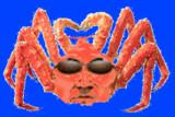 変態蟹土方BB