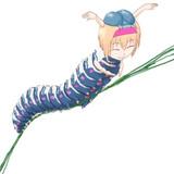 芋虫ALC☆