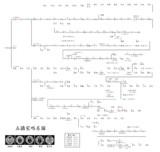 五摂家略系図