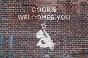 クッキーへようこそ☆.papers, please