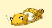 ごめん寝ジャガーさん
