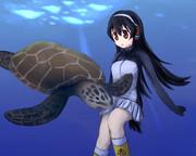 ウミガメと泳ぐジェーン