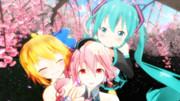 とりぷるばかな三人で桜と。