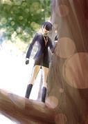 木の上に乗る芳さん