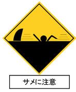 サメに注意その2