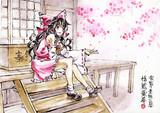 桜のお賽銭