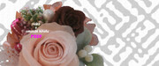 薔薇 ※ピンク・臙脂・写真加工・W・おむ07973