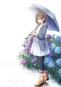 紫陽花の雨