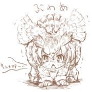 アフリカオオコノハズク第3形態