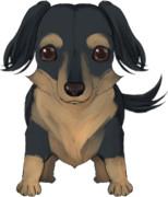 今作のゲームの主人公は飼い犬?
