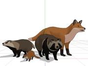 【配布】日本の野生動物セット(OMF8参加対象分)