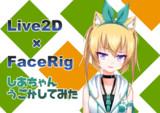【Live2D】しあちゃん動かしてみた【Facerig】