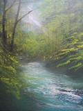 木洩れ日の渓流