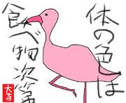 どうぶつ図鑑~フラミンゴ~