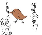 どうぶつ図鑑~スチーフンイワサザイ~