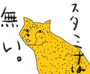 どうぶつ図鑑~チーター~