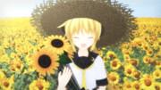 向日葵の少女