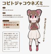 【地味すごオリフレS】コビトジャコウネズミ