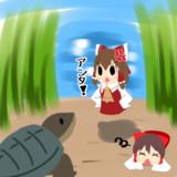vsカミツキガメ