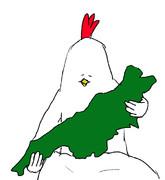 生まれたばかりの新潟を抱く鳥