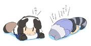 もふもふタヌキさんとアライさん団子