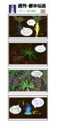 【週刊・都市伝説その117】謎の植物