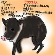 どうぶつ図鑑~クビワペッカリー~