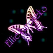 蝶 オリジナル