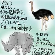 どうぶつ図鑑~サイ&ダチョウ~