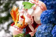紫陽花とリリーホワイト