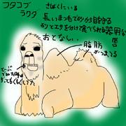 どうぶつ図鑑~フタコブラクダ~