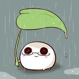 雨降りのおもち