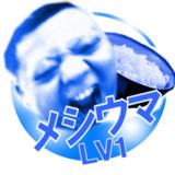 メシガウマイヨーLV1