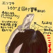 どうぶつ図鑑~エリマキトカゲ~