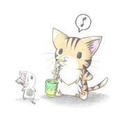 お茶を飲むにゃんこ