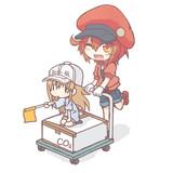 血小板ちゃんと赤血球さん