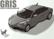 "IMAGINARY CAR ""GRIS"""