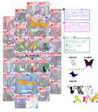 【TW5】熊本滅竜戦ごちゃマップ2