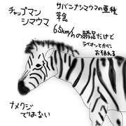 どうぶつ図鑑~チャップマンシマウマ~