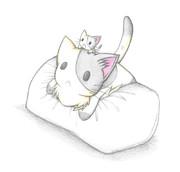 枕を占領するにゃんこ