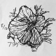 5分スケッチ 18/8/12