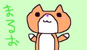 ヒカキンの飼い猫「まるお」